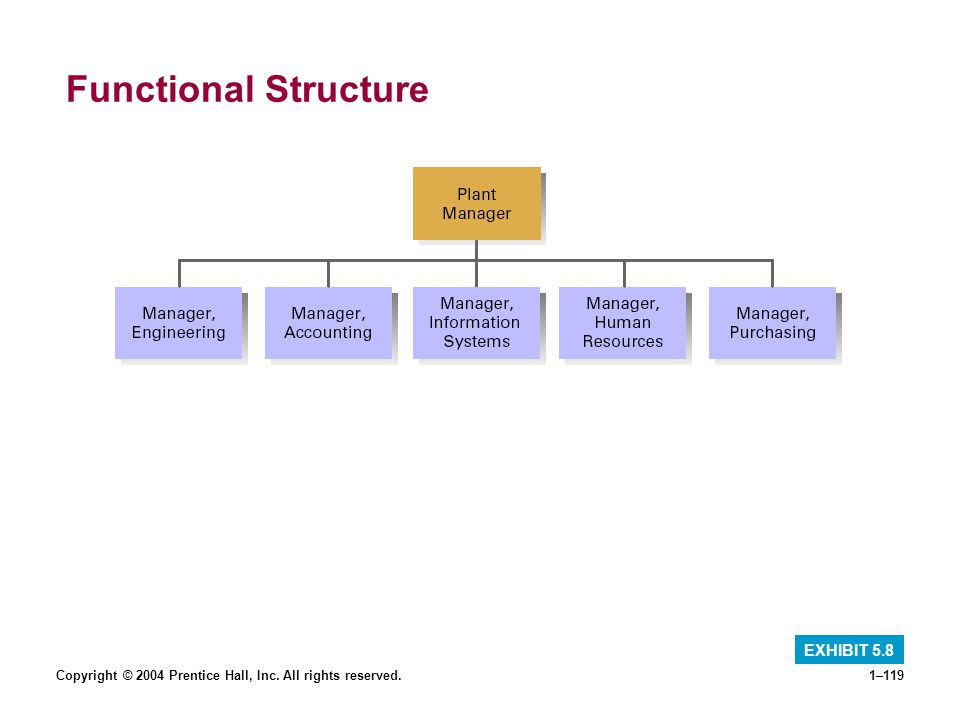 Functional Structure EXHIBIT 5.8