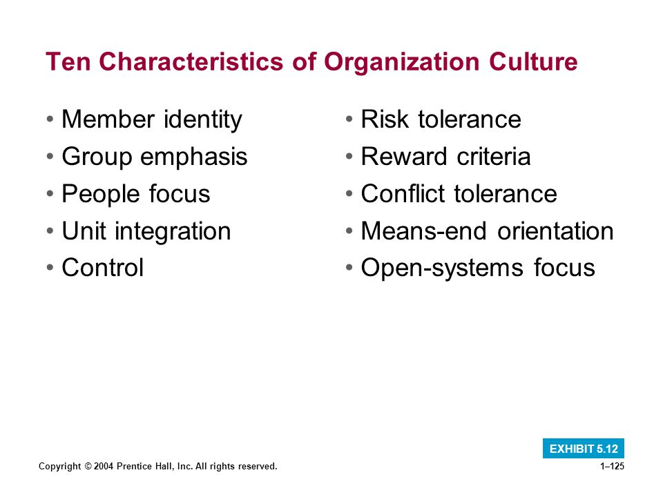 Ten Characteristics of Organization Culture