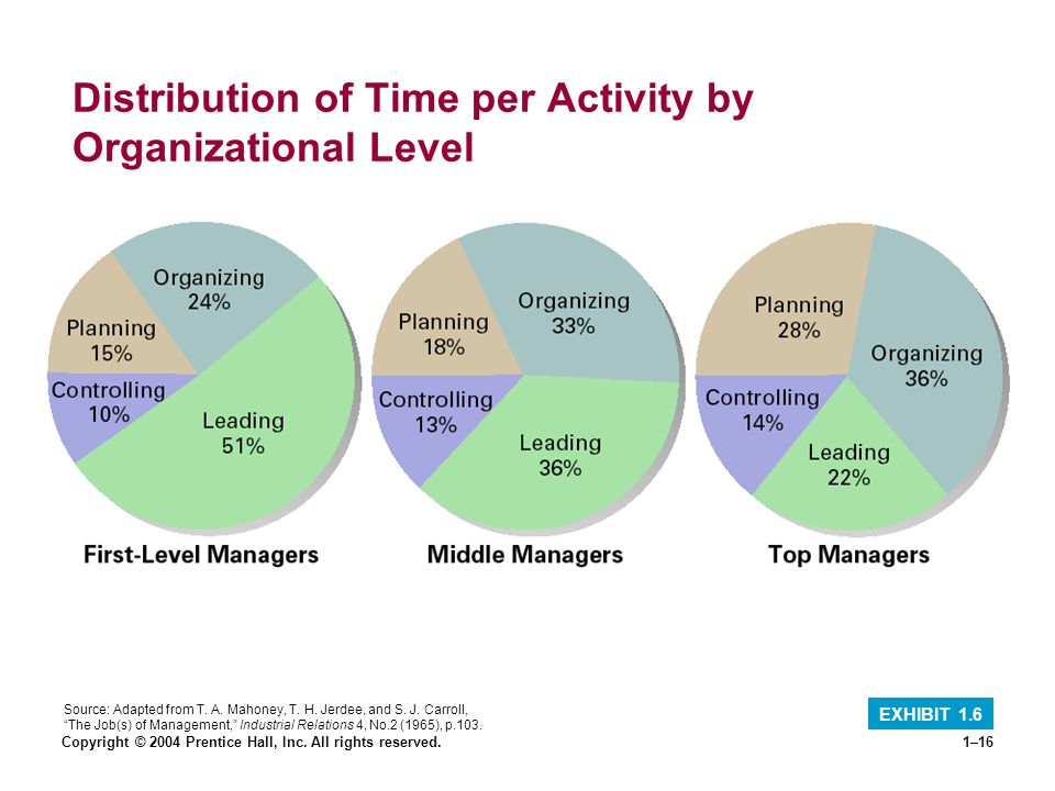 Distribution of Time per Activity by Organizational Level