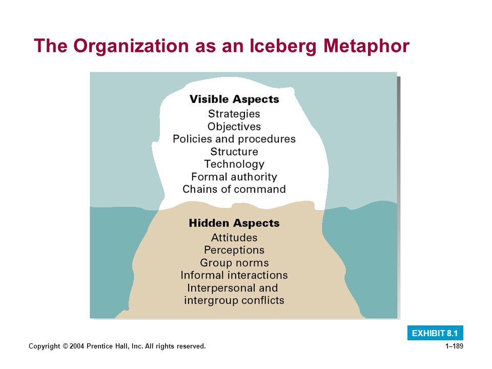 The Organization as an Iceberg Metaphor