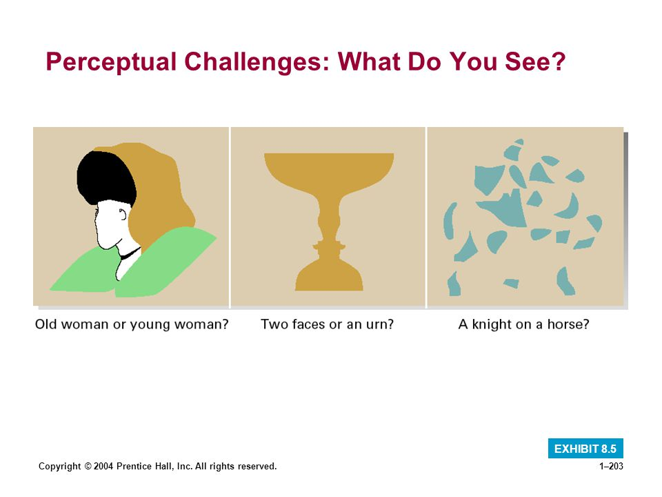 Perceptual Challenges: What Do You See
