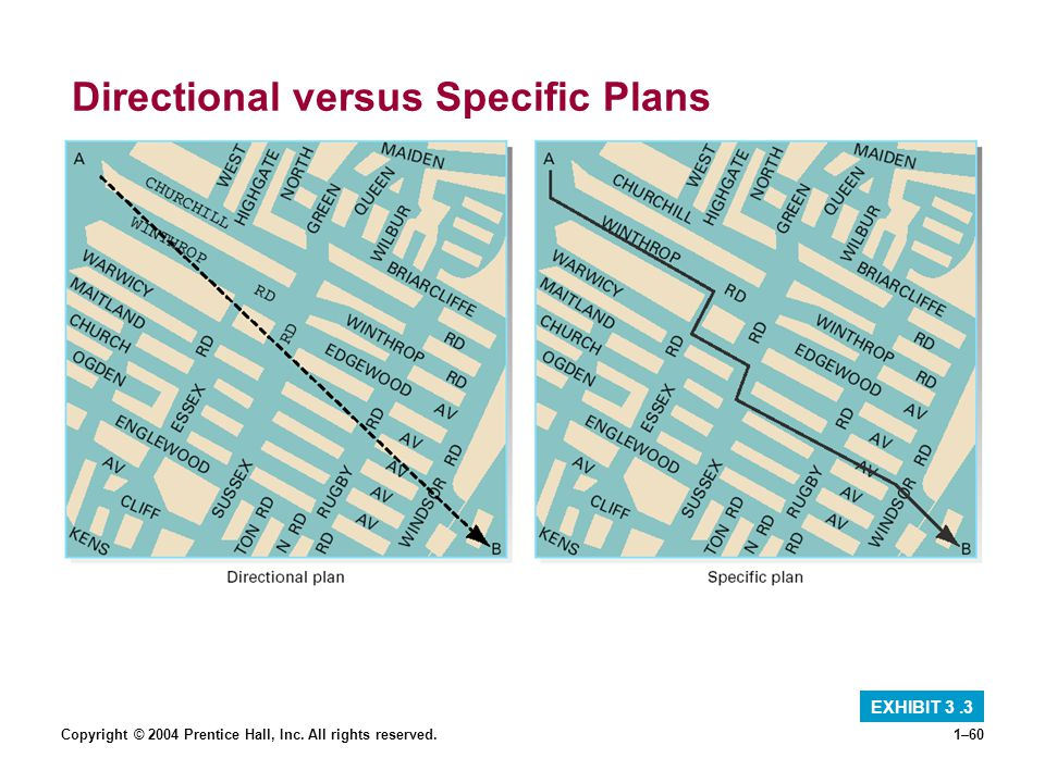 Directional versus Specific Plans