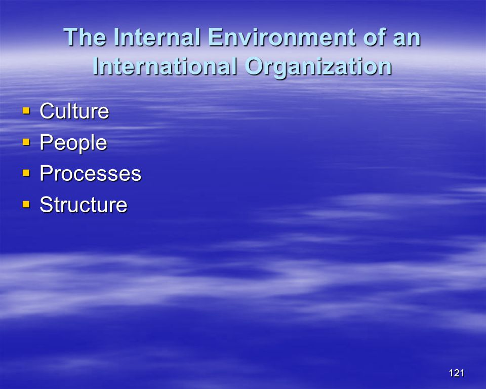 The Internal Environment of an International Organization
