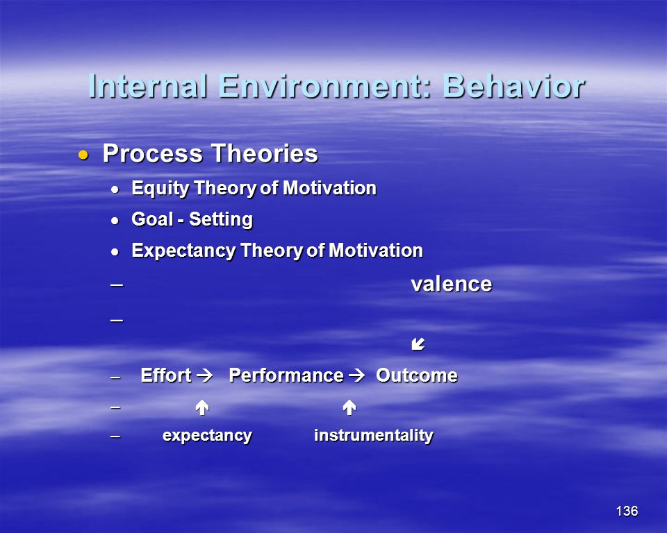 Internal Environment: Behavior