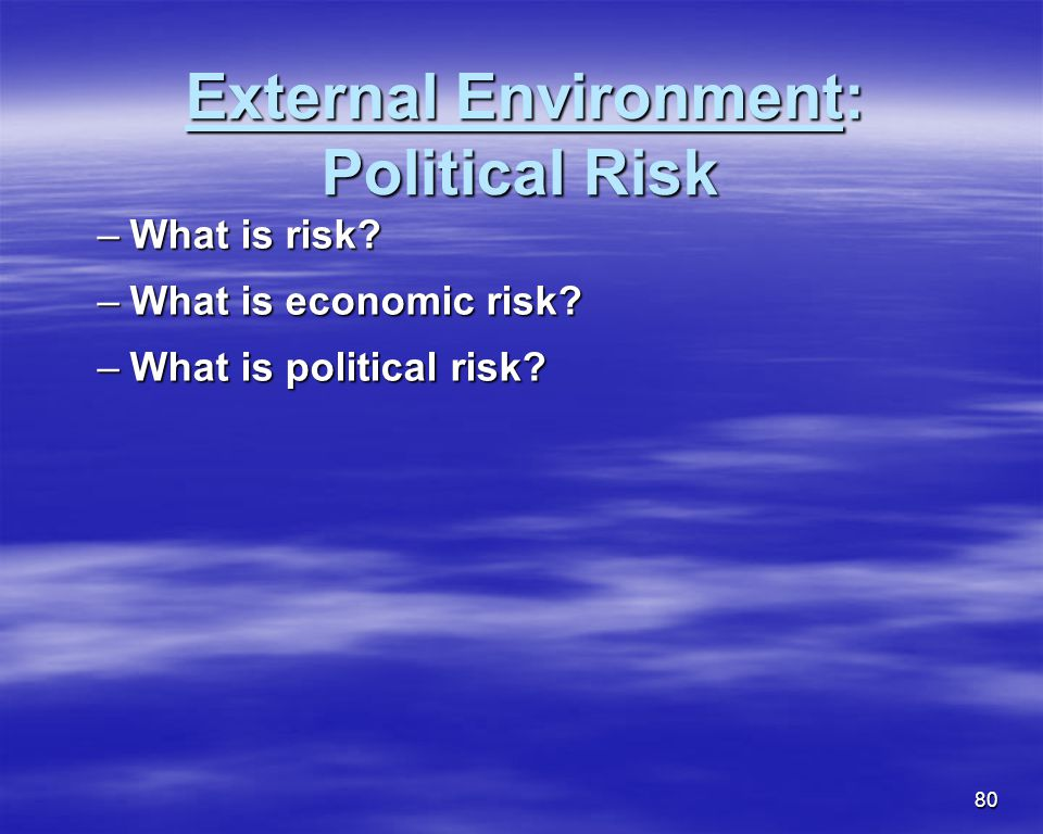 External Environment: Political Risk