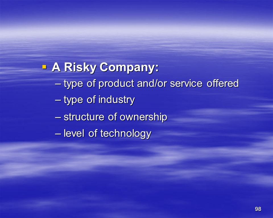 A Risky Company: type of product and/or service offered