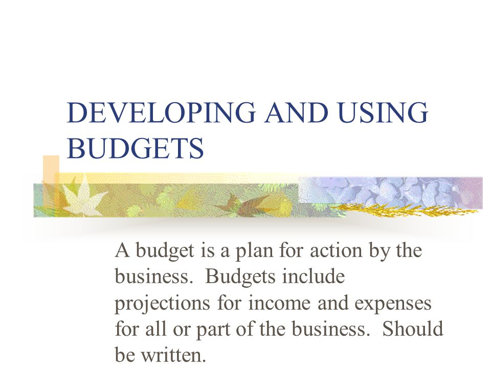 DEVELOPING AND USING BUDGETS