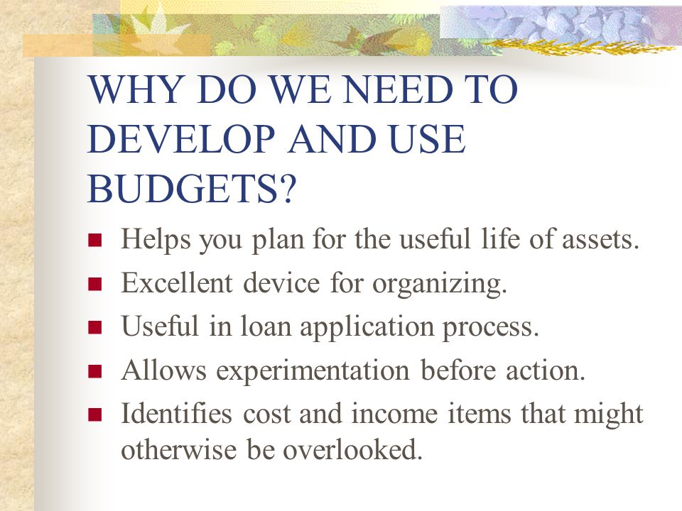 WHY DO WE NEED TO DEVELOP AND USE BUDGETS