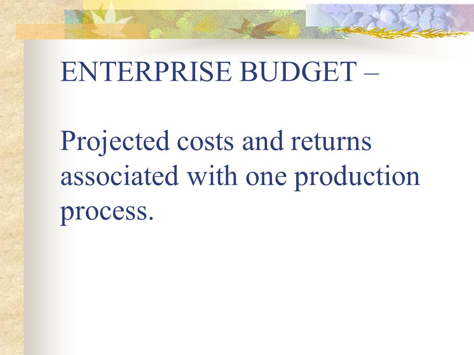 ENTERPRISE BUDGET – Projected costs and returns associated with one production process.
