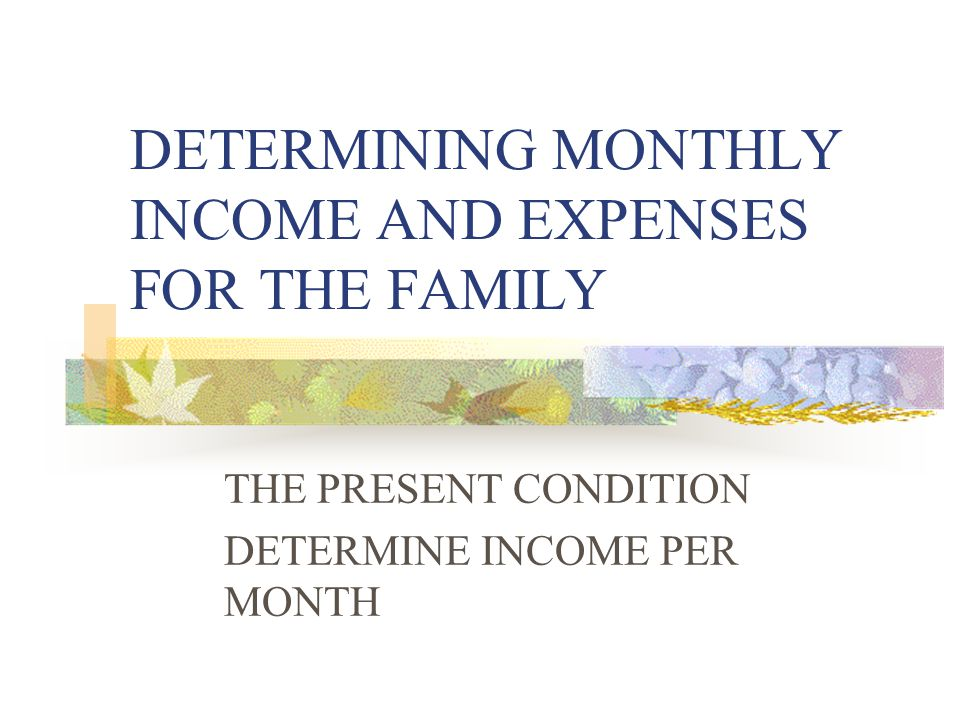 DETERMINING MONTHLY INCOME AND EXPENSES FOR THE FAMILY