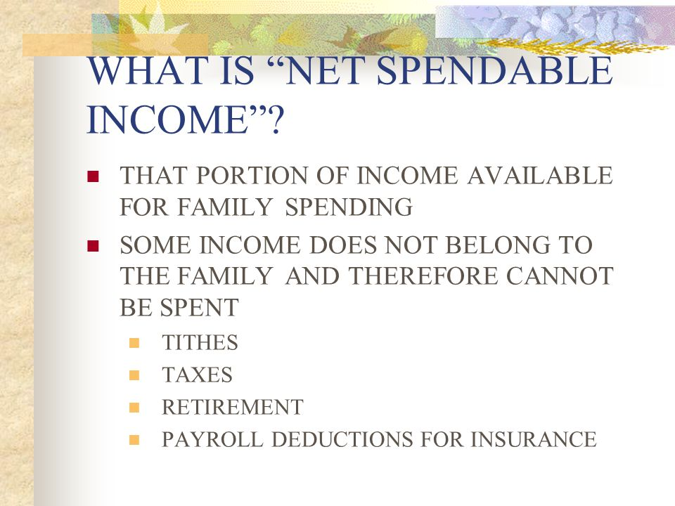 WHAT IS NET SPENDABLE INCOME