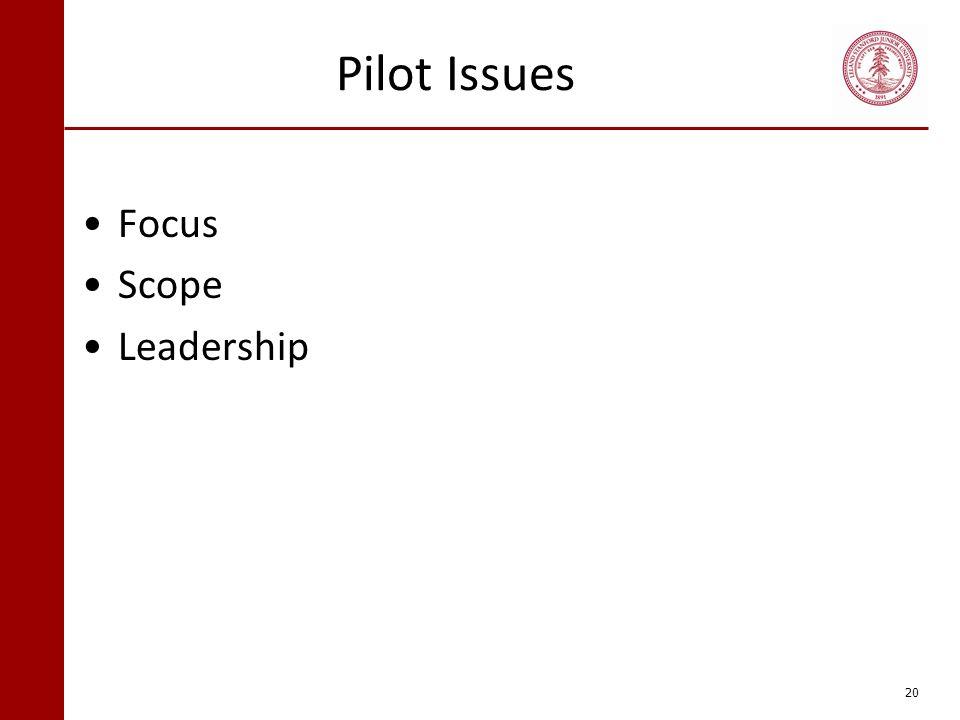 Pilot Issues Focus Scope Leadership