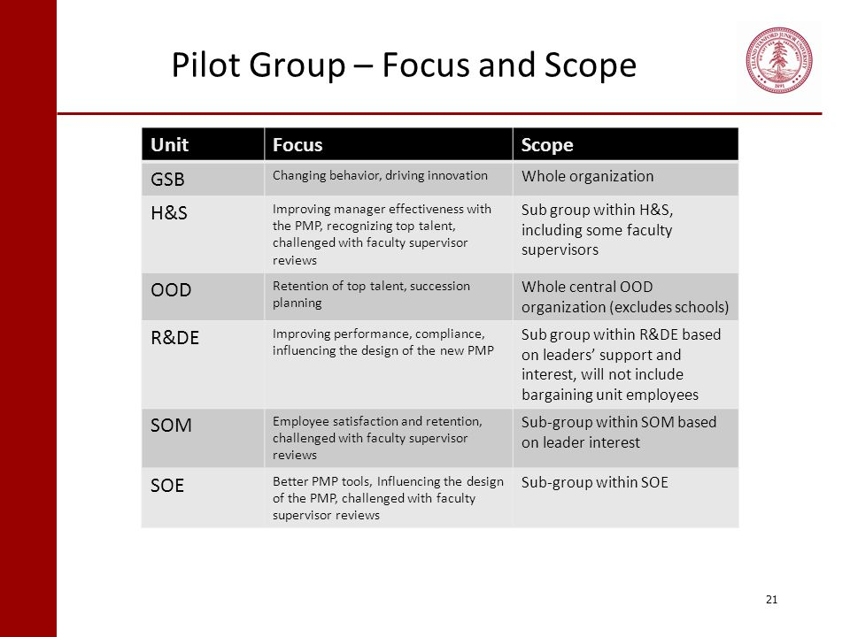 Pilot Group – Focus and Scope