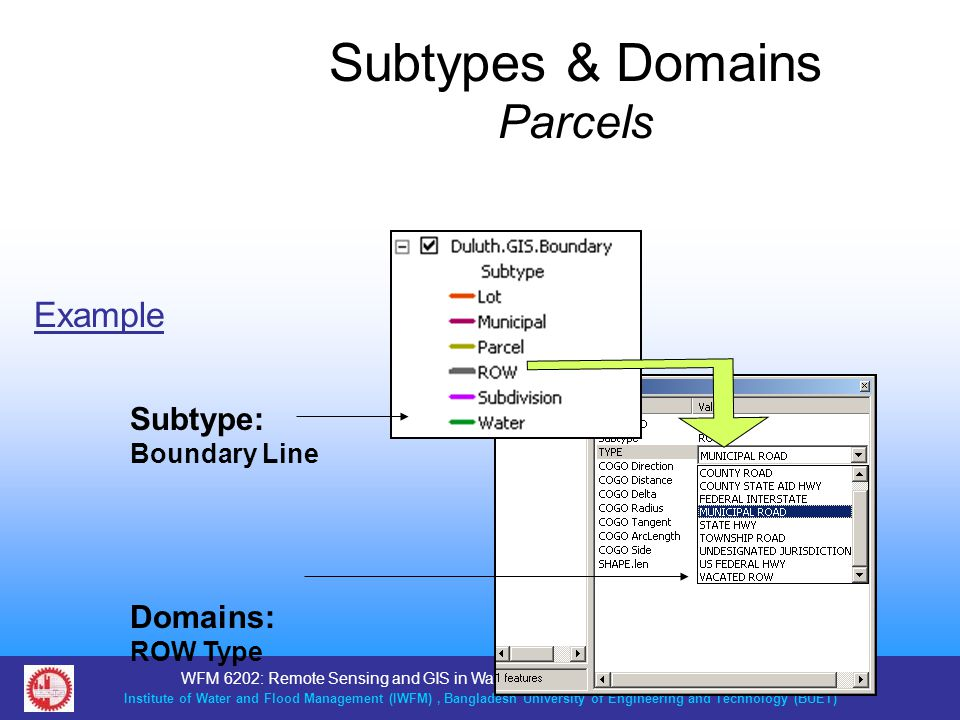Subtypes & Domains Parcels