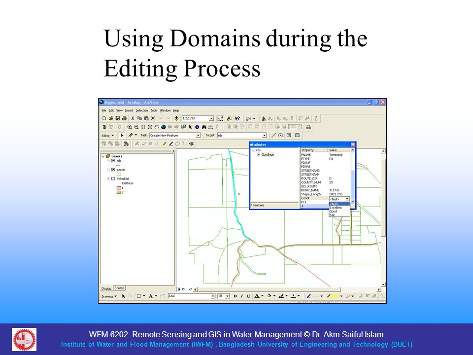 Using Domains during the Editing Process