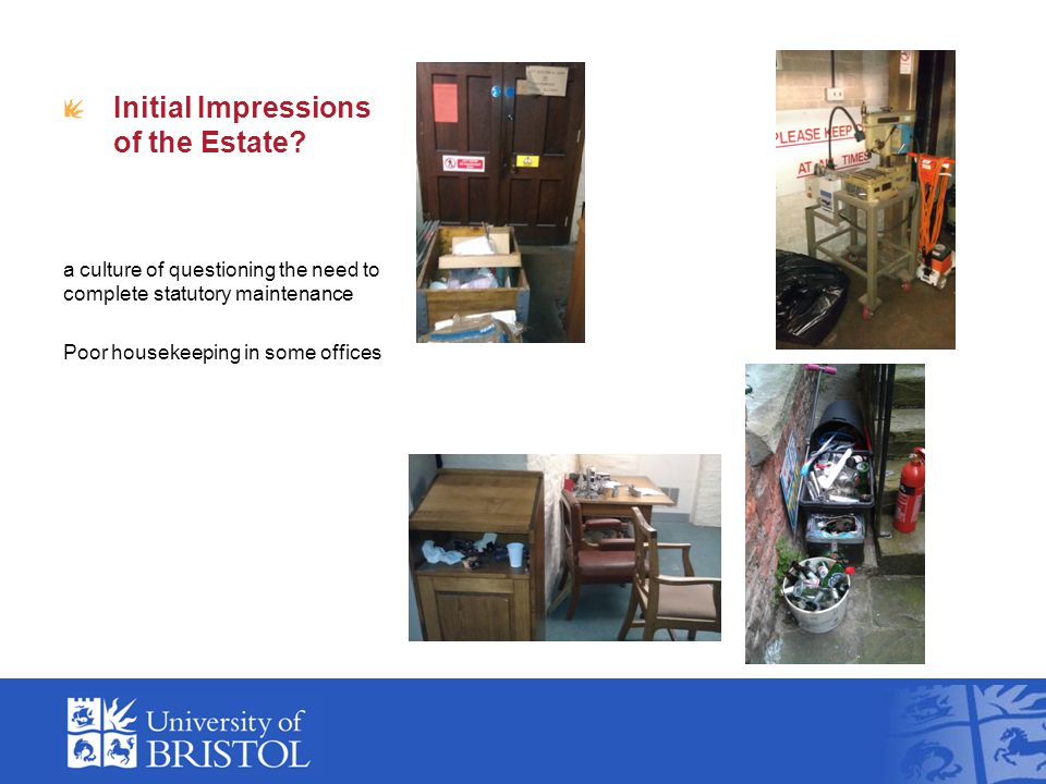 Initial Impressions of the Estate