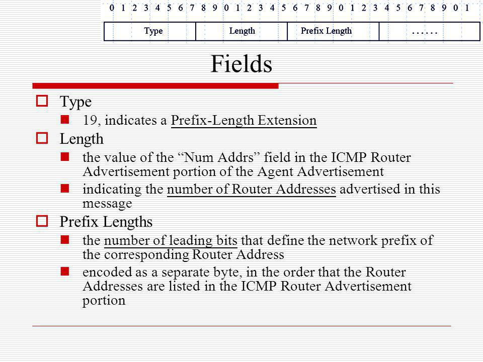 Fields Type Length Prefix Lengths