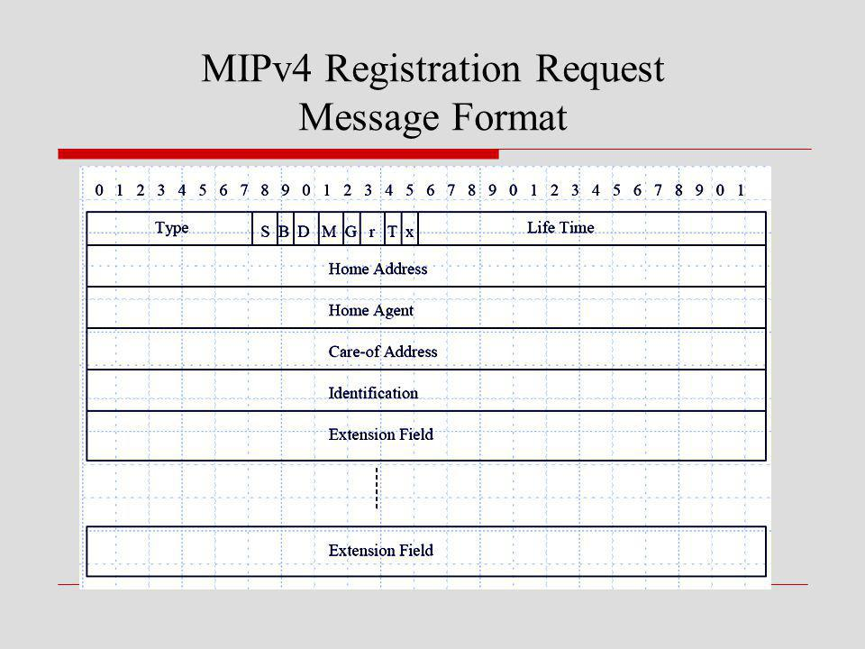 MIPv4 Registration Request Message Format