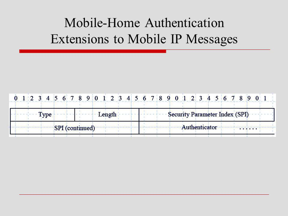 Mobile-Home Authentication Extensions to Mobile IP Messages