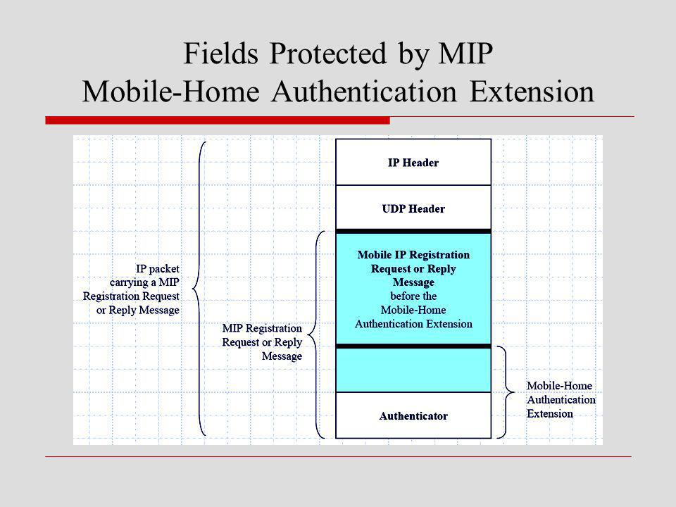 Fields Protected by MIP Mobile-Home Authentication Extension