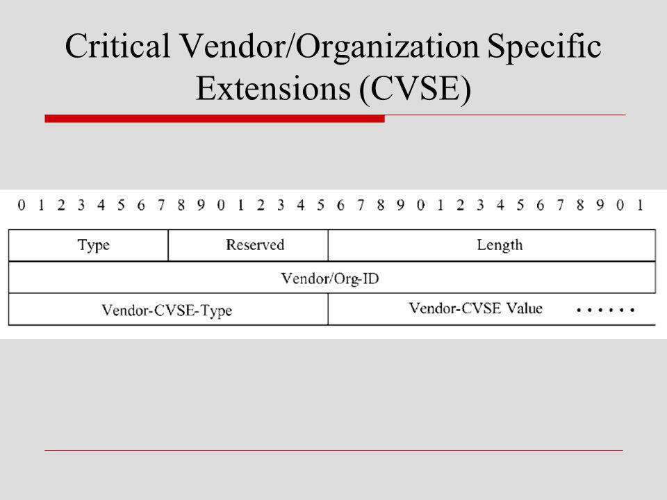 Critical Vendor/Organization Specific Extensions (CVSE)