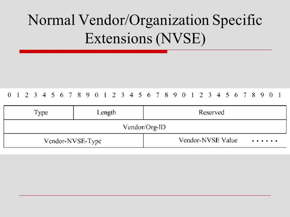 Normal Vendor/Organization Specific Extensions (NVSE)