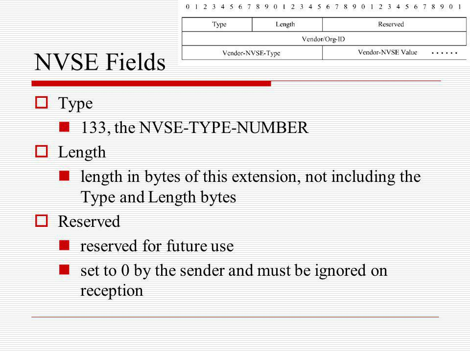 NVSE Fields Type 133, the NVSE-TYPE-NUMBER Length