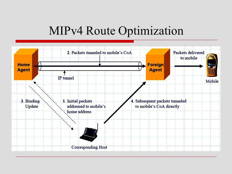 MIPv4 Route Optimization