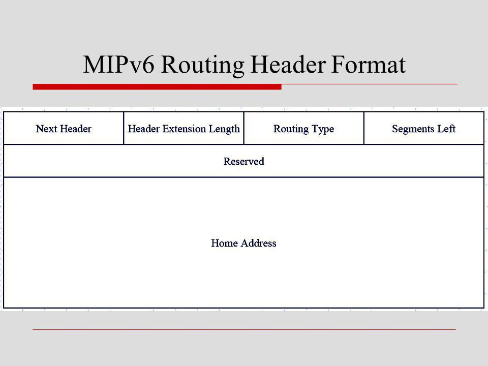 MIPv6 Routing Header Format