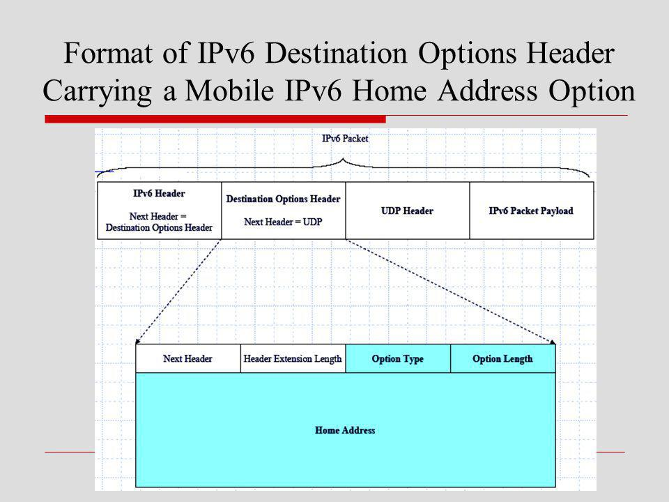 Format of IPv6 Destination Options Header Carrying a Mobile IPv6 Home Address Option