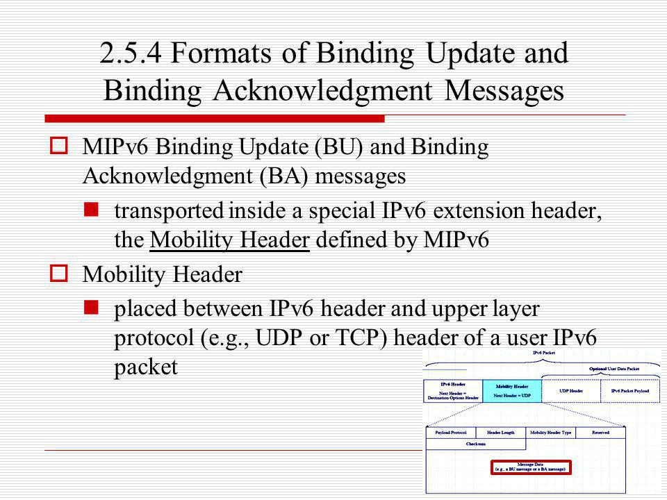 2.5.4 Formats of Binding Update and Binding Acknowledgment Messages