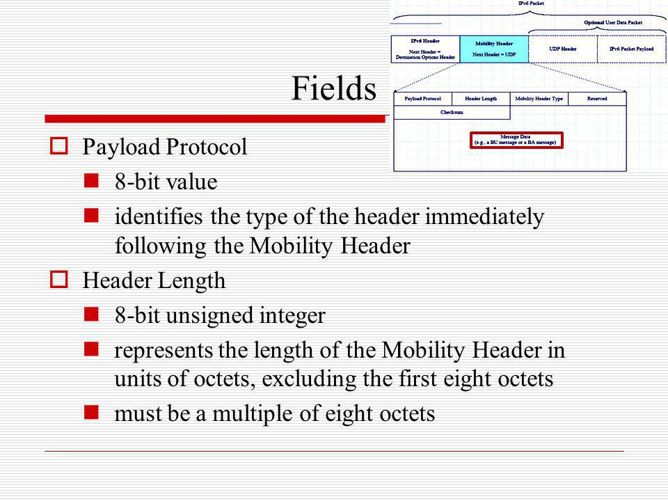 Fields Payload Protocol 8-bit value