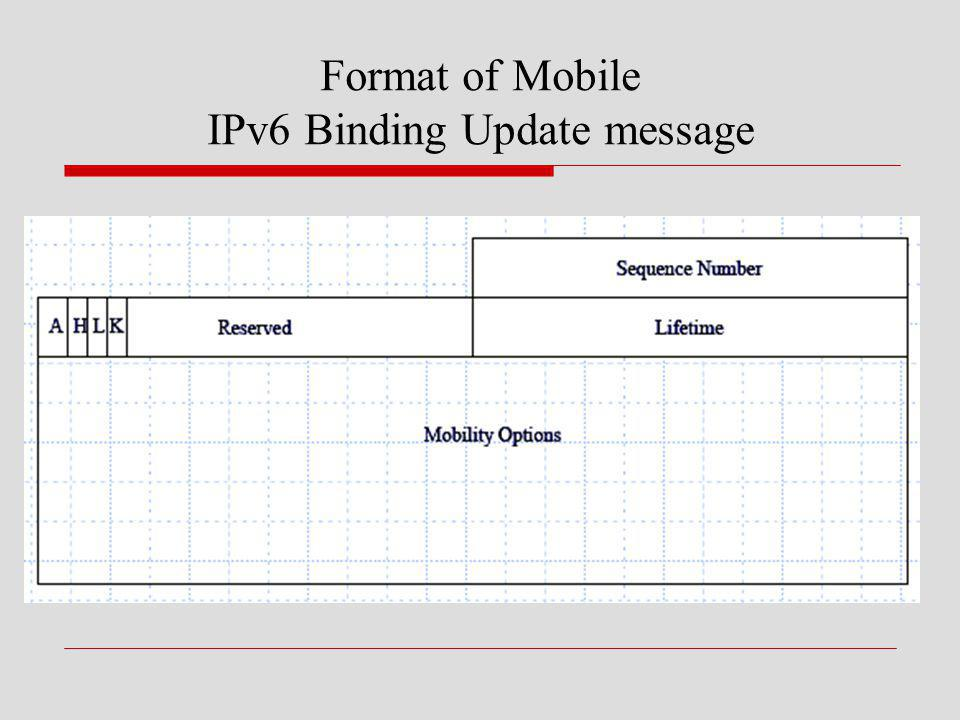 Format of Mobile IPv6 Binding Update message