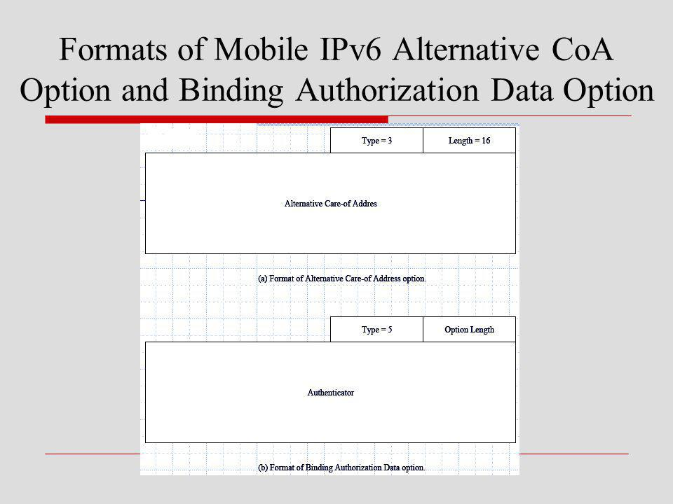Formats of Mobile IPv6 Alternative CoA Option and Binding Authorization Data Option