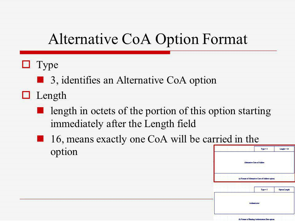 Alternative CoA Option Format