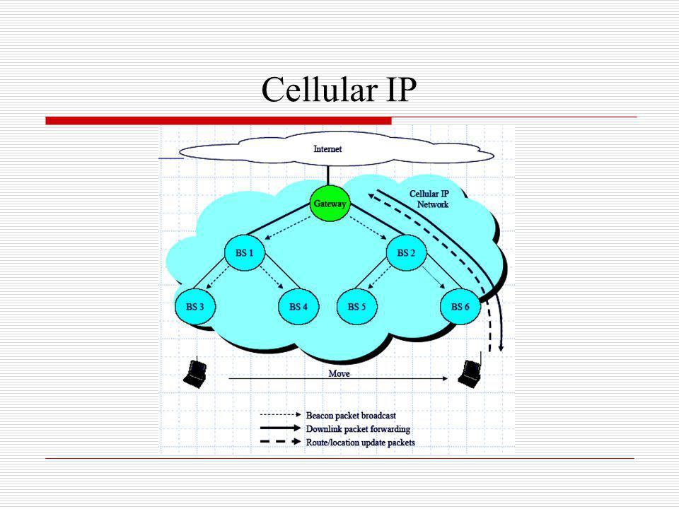 Cellular IP