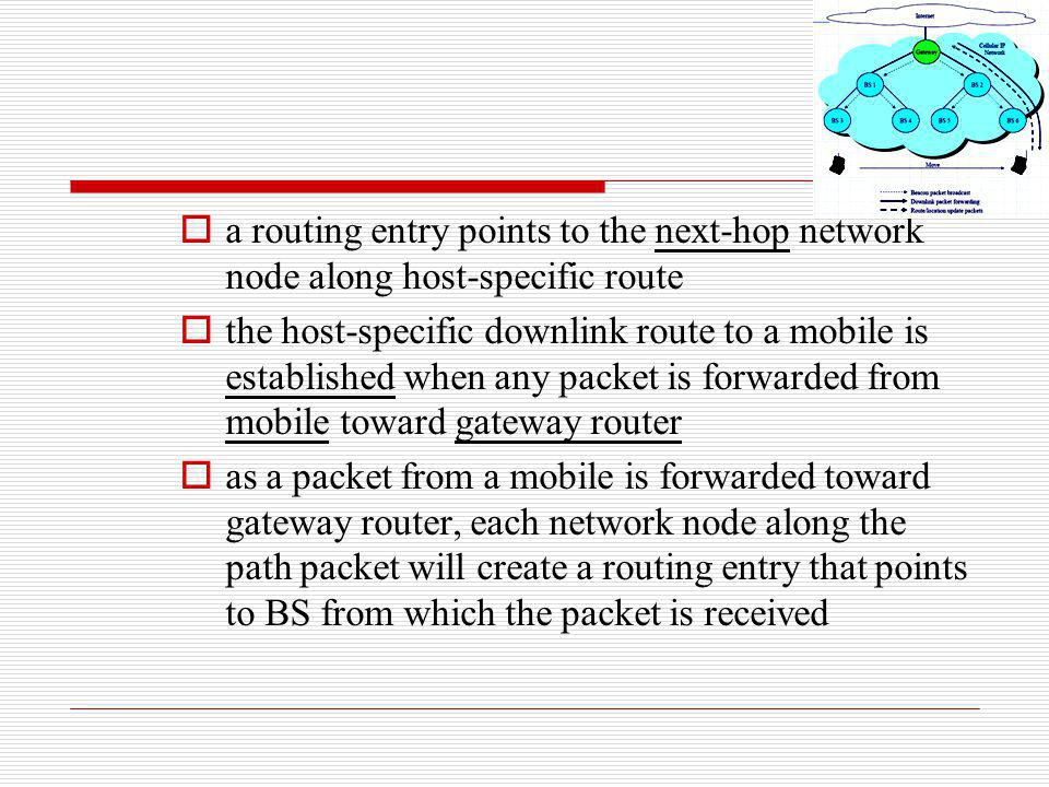 a routing entry points to the next-hop network node along host-specific route