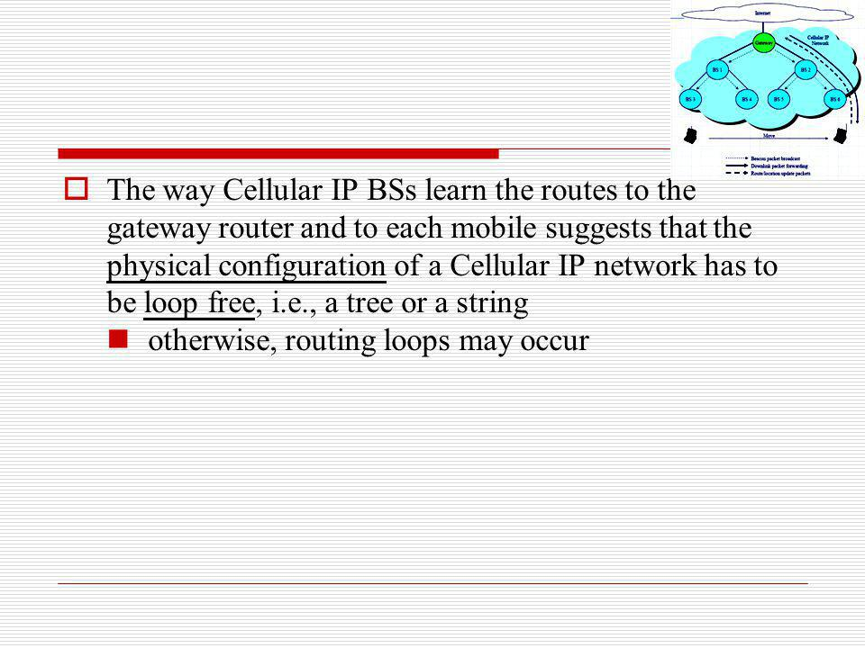 The way Cellular IP BSs learn the routes to the gateway router and to each mobile suggests that the physical configuration of a Cellular IP network has to be loop free, i.e., a tree or a string