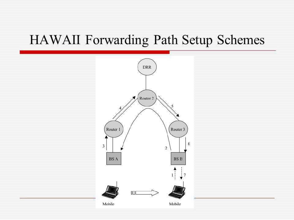 HAWAII Forwarding Path Setup Schemes