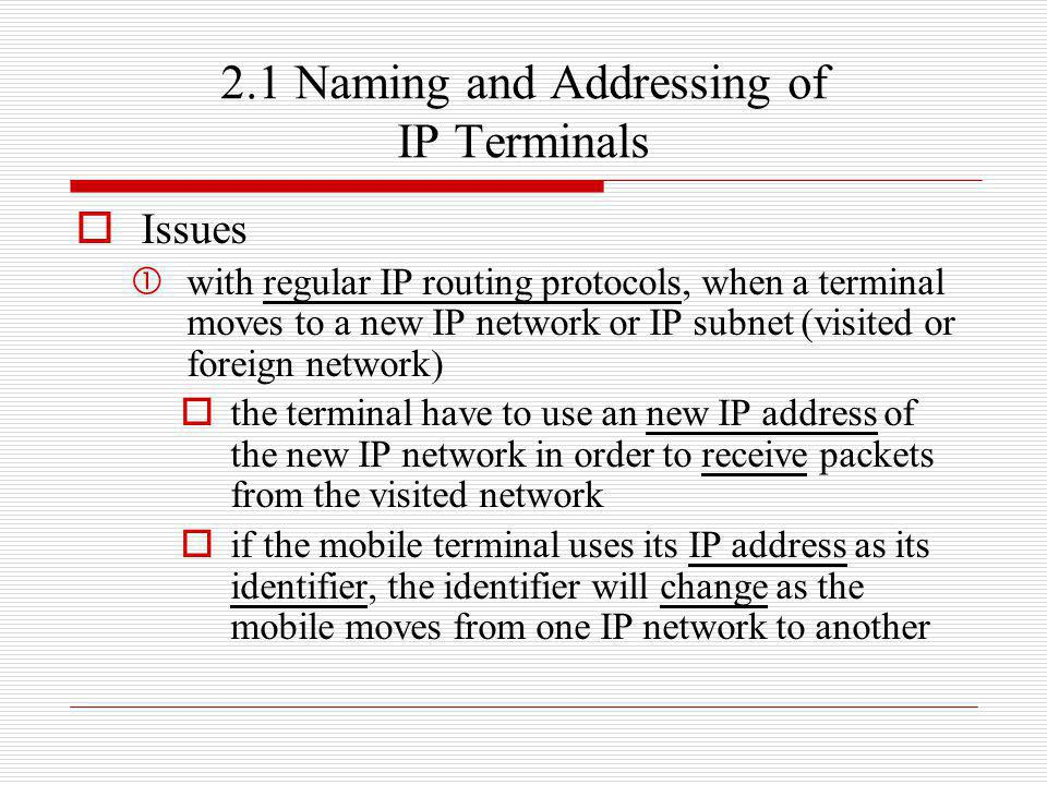 2.1 Naming and Addressing of IP Terminals