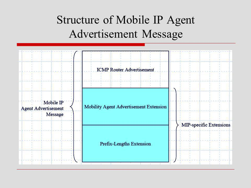 Structure of Mobile IP Agent Advertisement Message
