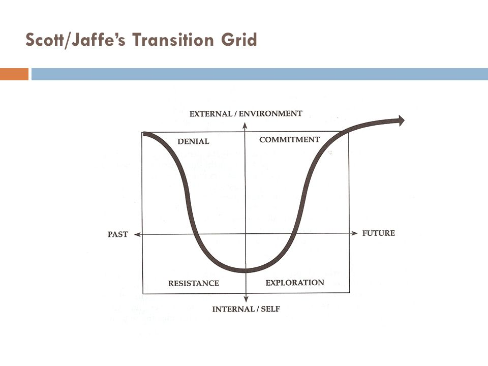 Scott/Jaffe's Transition Grid
