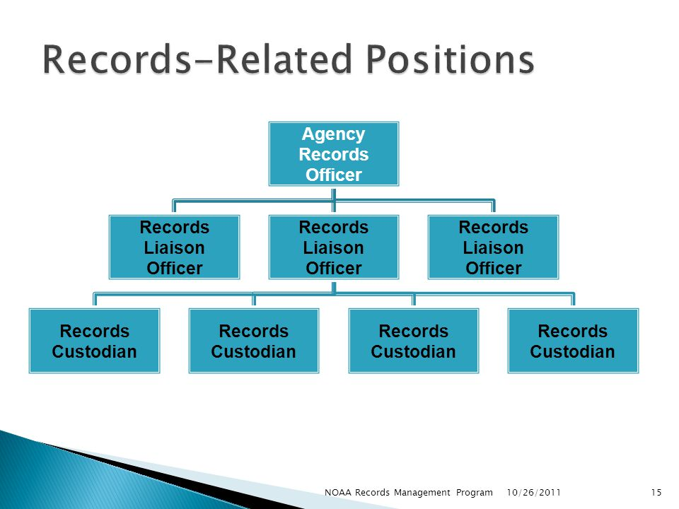 Records-Related Positions