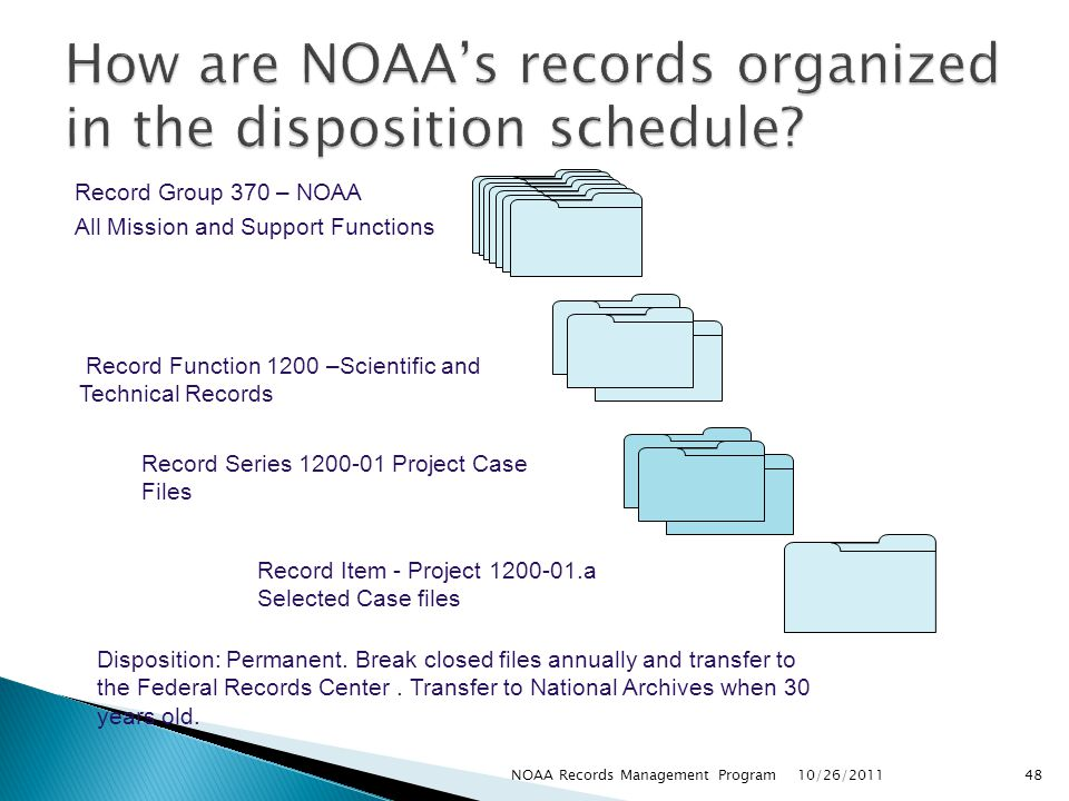 How are NOAA's records organized in the disposition schedule