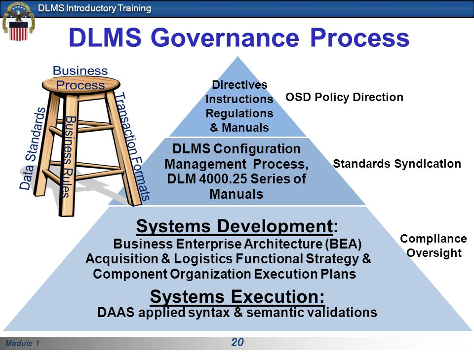 DLMS Governance Process