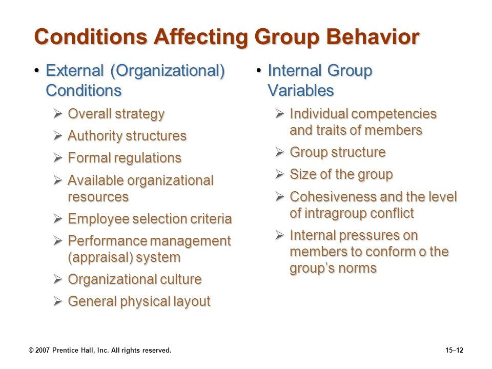 Conditions Affecting Group Behavior