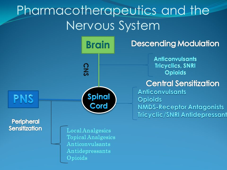 Pharmacotherapeutics and the Nervous System