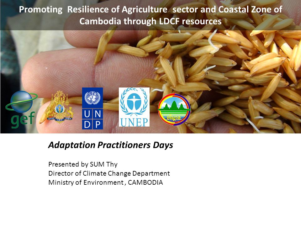 Adaptation Practitioners Days
