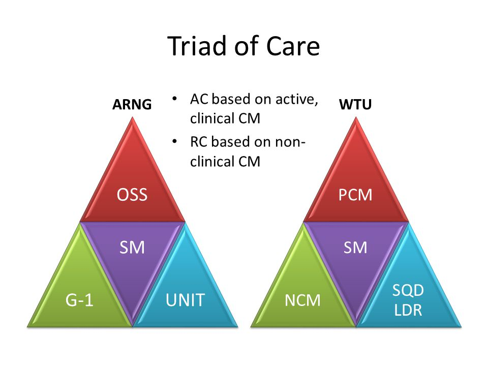Triad of Care OSS G-1 SM UNIT PCM SM SQD LDR NCM ARNG WTU