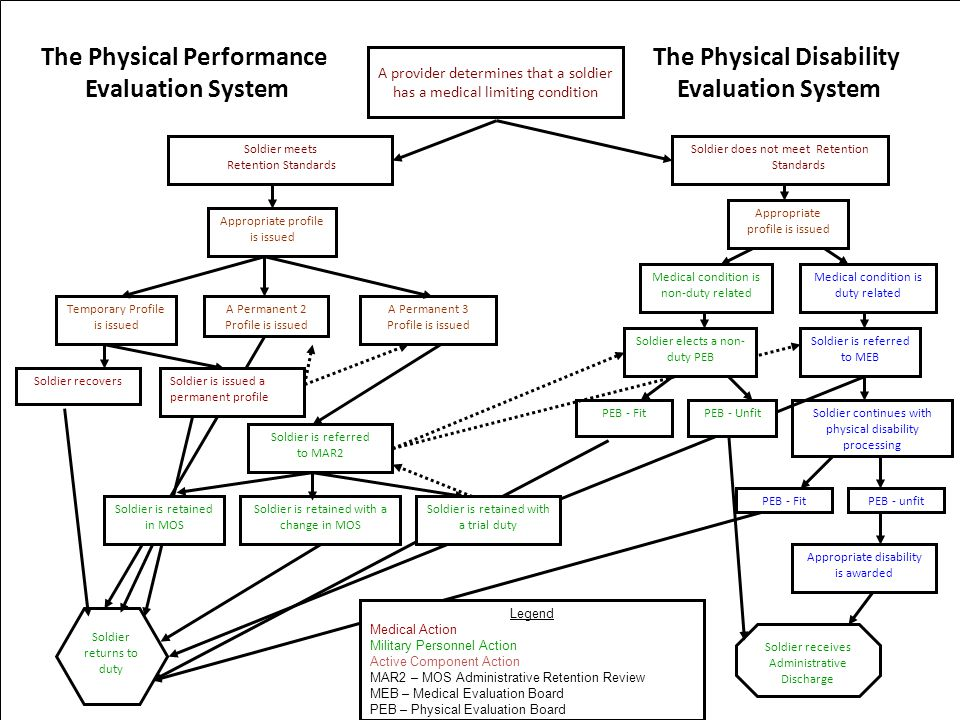 The Physical Performance The Physical Disability